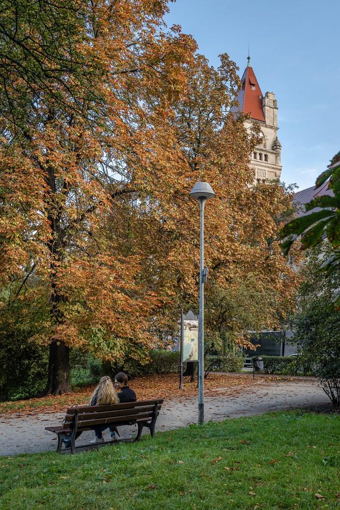 Park Stanisława Tołpy we Wrocławiu